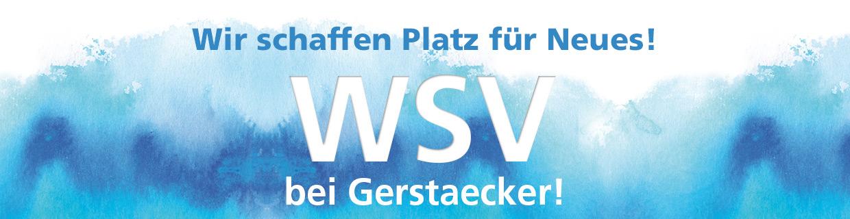 WSV 2020